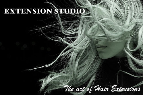 Course 1- Hair extension 1 day intensive corse
