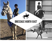 dressage north east web 33.jpg