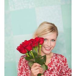 🌹I love red roses 📸 by Becca Sabbot #redroses #rose #francescas  #minnesota #capture #tiffanyblue