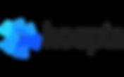Hoopla-Logo-3.png