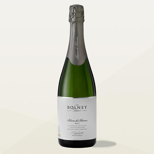 Bolney Wine Estate - Blanc de Blancs 2015