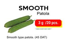 SMOOTH PATOLA.jpg