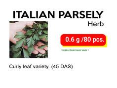 ITALIAN PARSELY.jpg