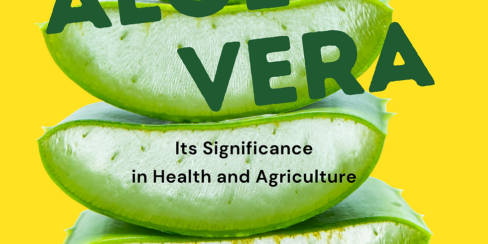 The Versatile Plant: Aloe Vera and Its Significance in Health and Agriculture