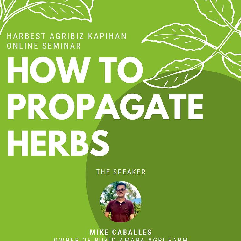 Agribiz Kapihan Online Seminar: How to Propagate Herbs