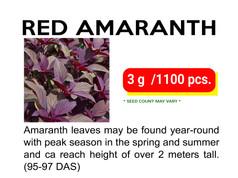 OPV RED AMARANTH.jpg