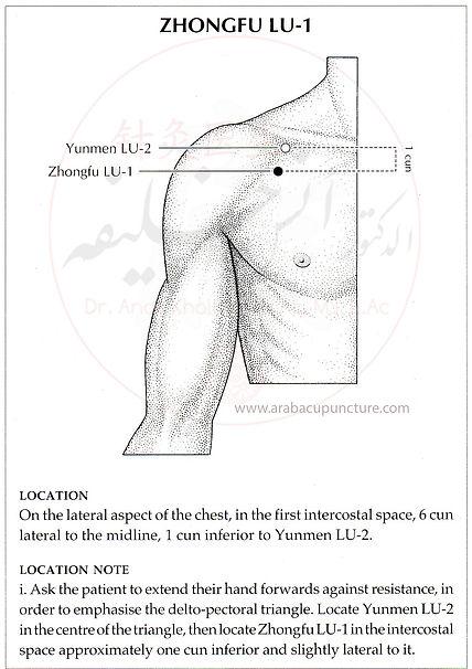 Lung 1.jpg