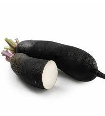 Radis noir 500 g