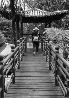 bnw pagoda