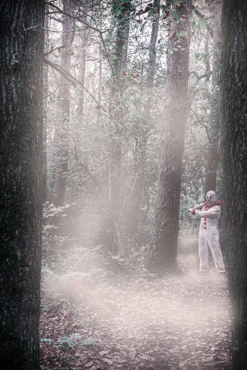 foggy woods clown.jpg