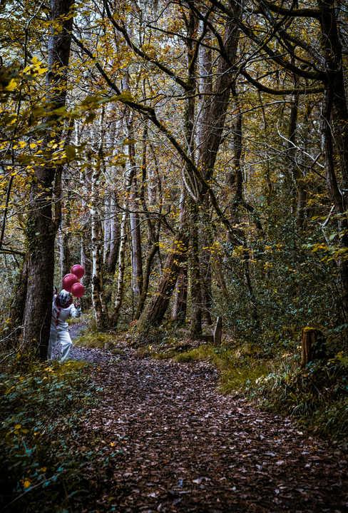 yellow woods clown.jpg