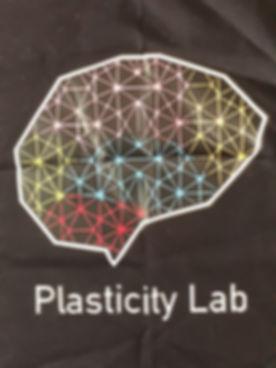 Plasticity Lab