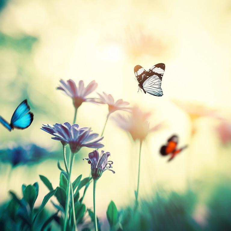 Sanfte Schmetterlings-Babymassage