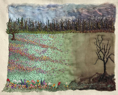 Sue Spence 'Where Has All The Meadows Gone'