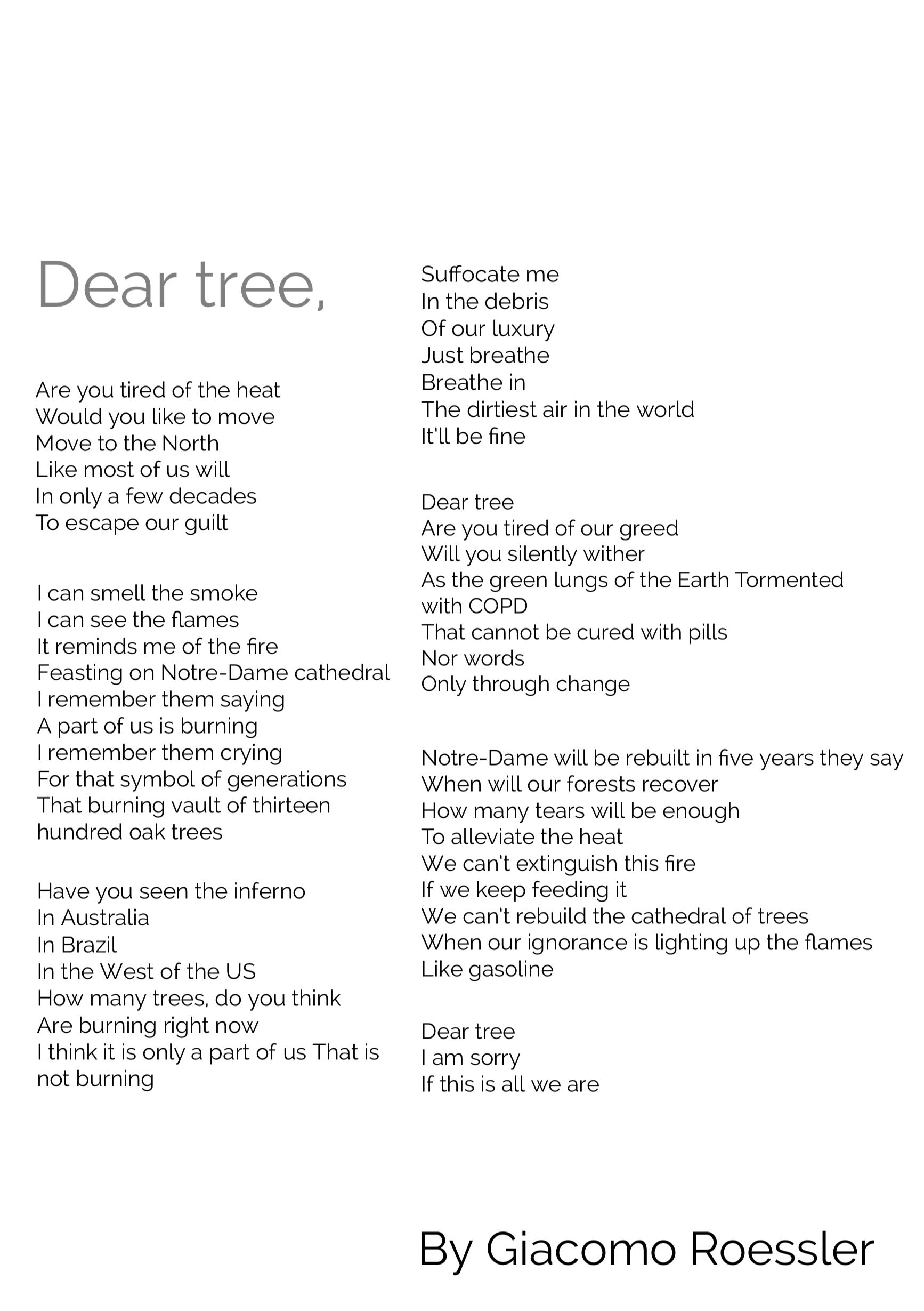 Giacomo Roessler 'Dear tree,'