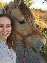 Praktikum Pferd