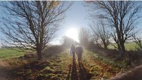 Spaziergang mit Pferd