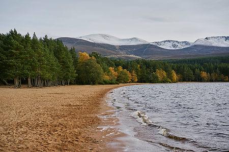 Loch Morlich FLS Scenic.jpg