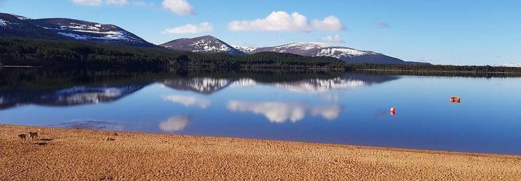 Loch Morlich Open Water Swimming Coachin
