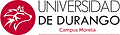 UNIV DURANGO.png