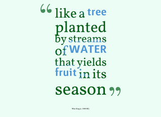 a Child is like a tree