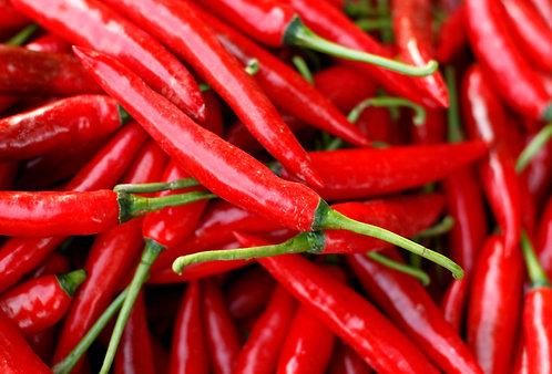 Chili Pepper (Capsicum) CO2