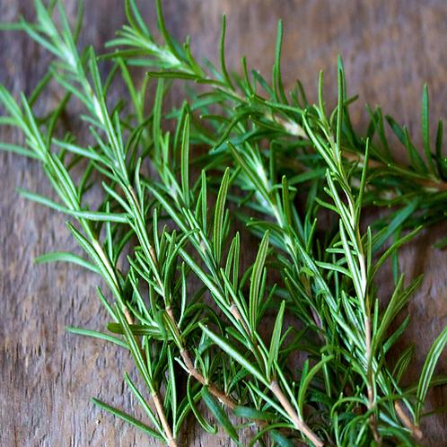 Rosemary CO2 Select