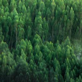 Paisajes de COLOMBIA que te harán querer respirar naturaleza