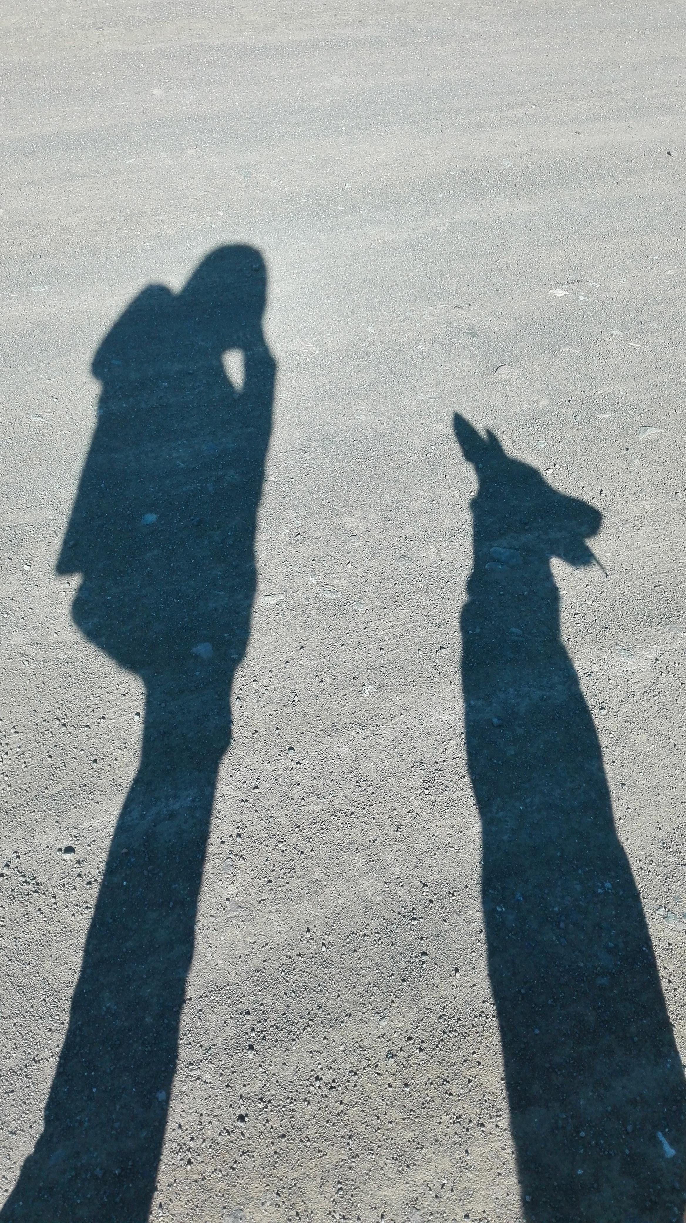 Flamenka y yo
