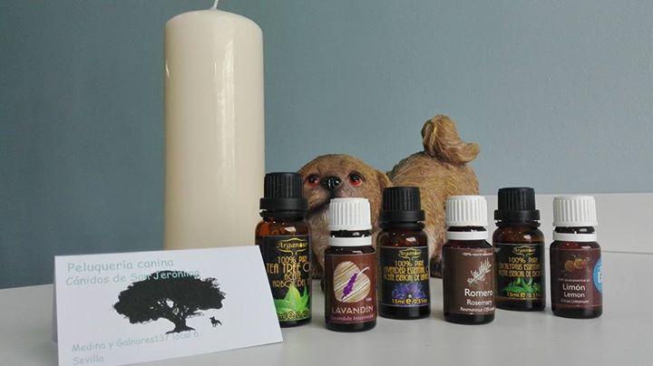 En Canidos trabajamos con aceites esenciales puros para tratar distintas afecciones de la piel.jpg E