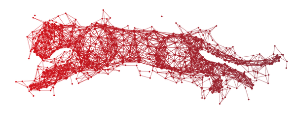 Ocelot_Data-01.png