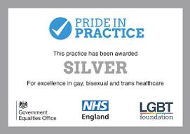pride in practice.png