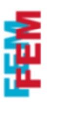 NEW LOGO FEM II.jpg