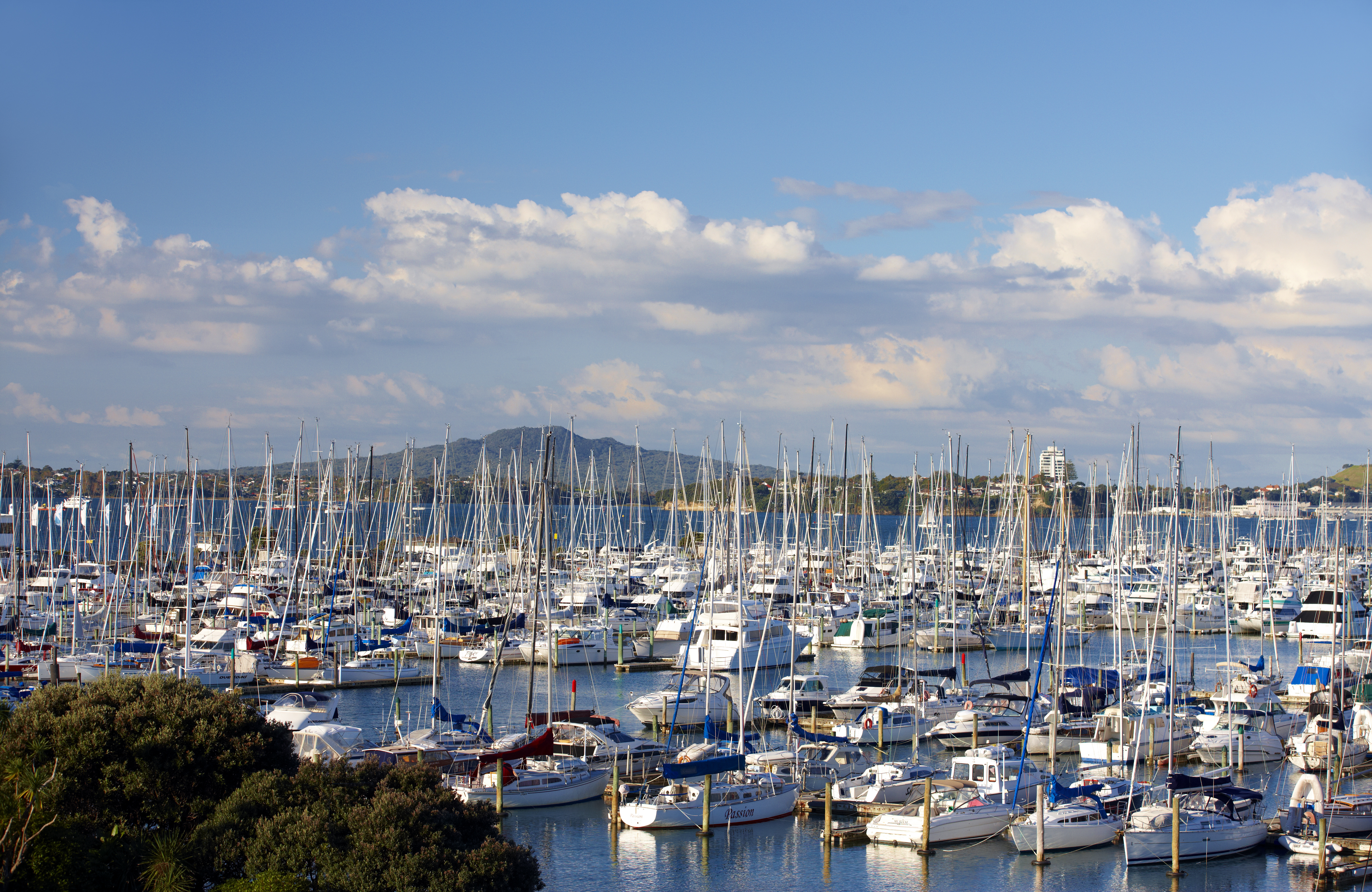 Westhaven Marina And Rangitoto_77928.jpg