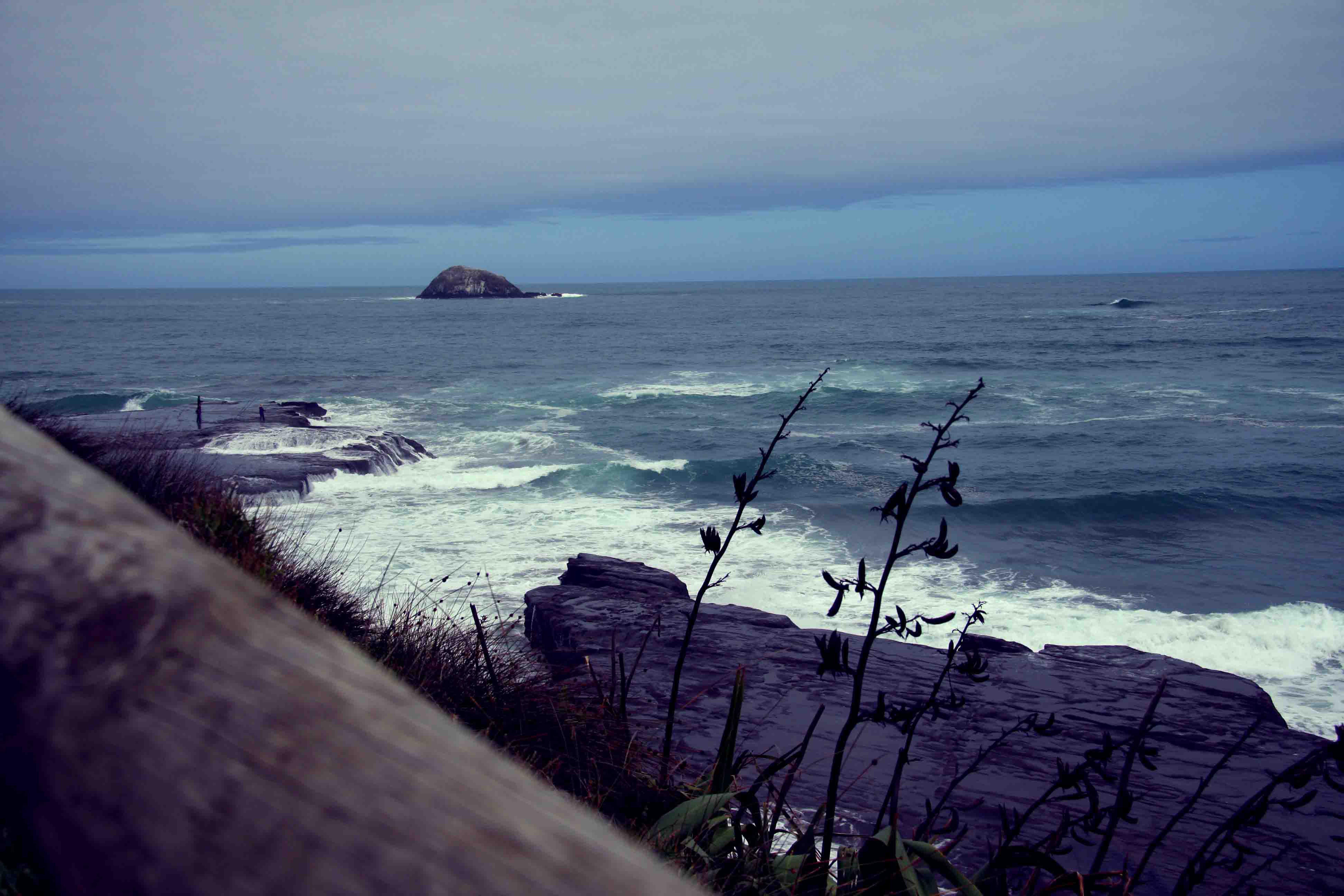 Muriwai Beach_64726.jpg