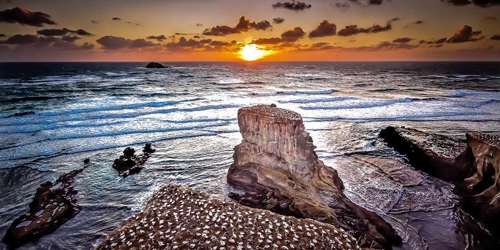 Muriwai Beach_79114.jpg