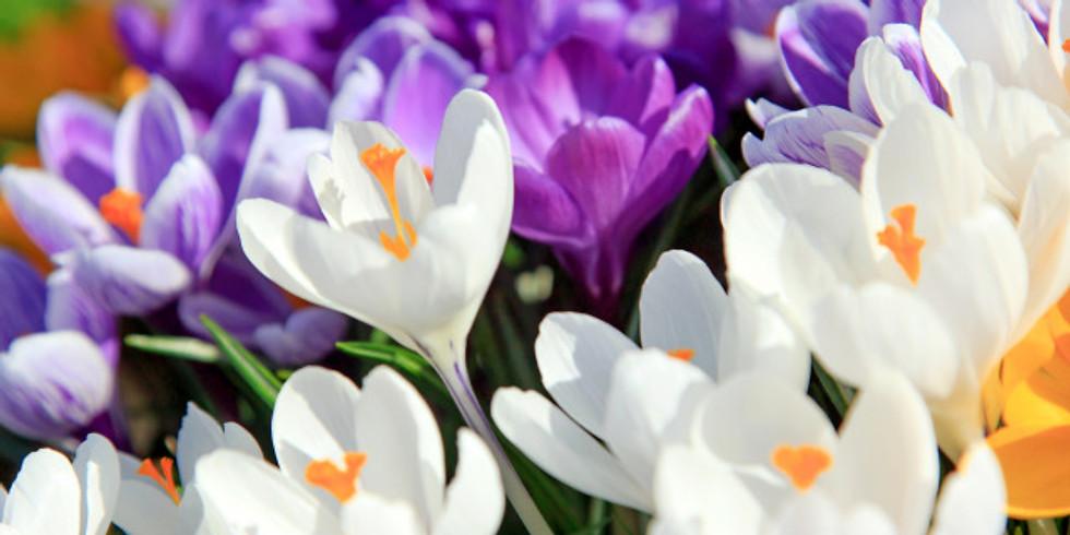 """Литературный онлайн-конкурс """"Стихи о весне"""" c 17 апреля по 29 апреля 2020"""