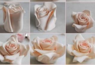Роза из Екатерины Ершовой