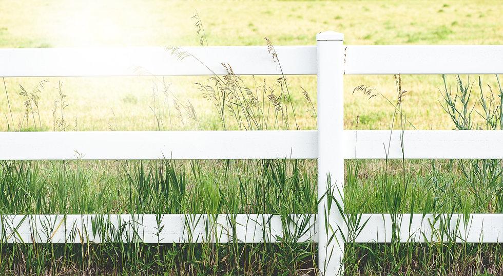 White Fence_edited.jpg
