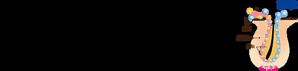 発酵化粧品