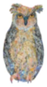 owl_website.jpg
