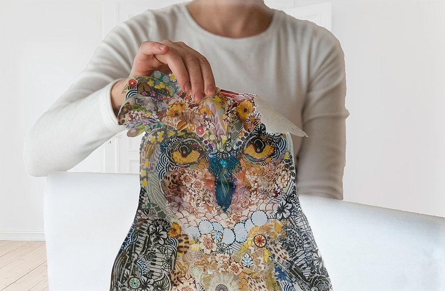 Open_Owl.jpg