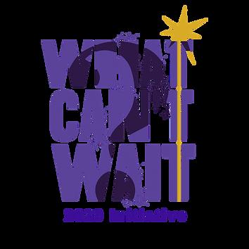 2020 Initiative.png