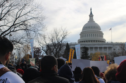 Protestors outside the US Capitol, 2017