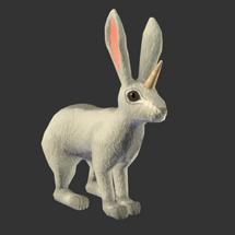 Unicorn Rabbit