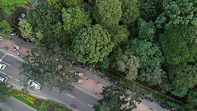 Entrada Jardín Botánico de Bogota.jpg