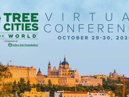 Conferencia virtual Tree Cities of the World