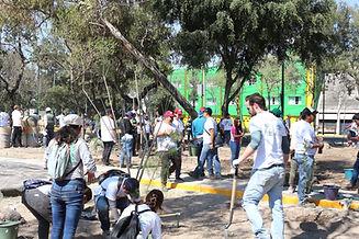 fotos_reforestación_urbana_biobaby_01m