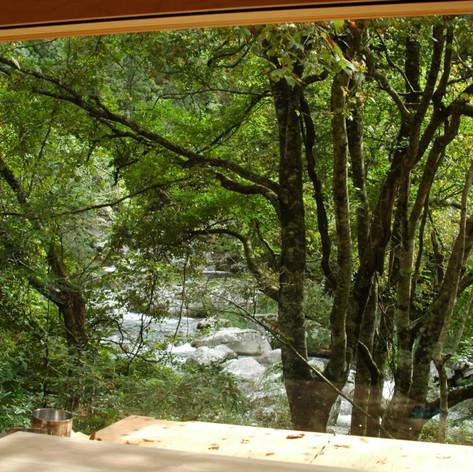 左手窓からの景色
