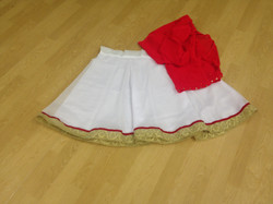 5 matching Ghagra Skirts